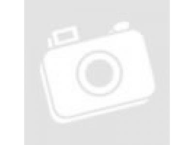 Болт крепления суппорта H2/H3 HOWO (ХОВО) Q151B1635TF2